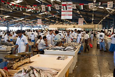 What to see in dubai sygic travel for Franks fish market