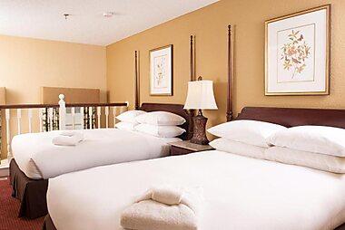 Best Pet Friendly Hotels In Charleston County