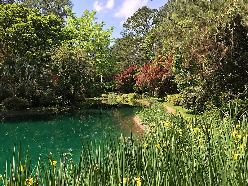 Alfred B Maclay Gardens State Park In Tallahassee Usa