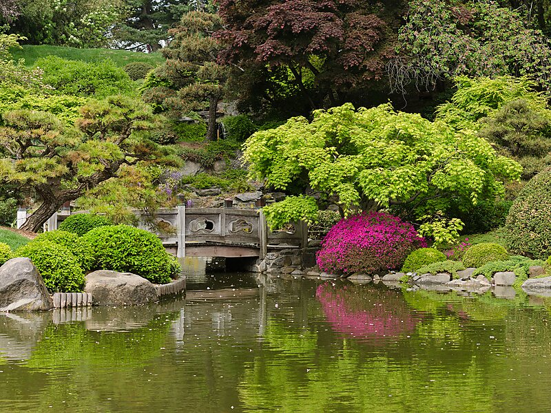 Brooklyn Botanic Garden in New York City, USA | Sygic Travel