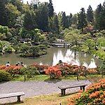 Japanese Garden Seattle, USA