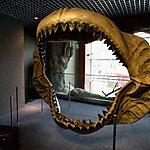 National Aquarium Baltimore, USA