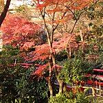 Chinzan-Sō Garden Tokyo, Japan