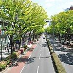 Omotesandó District Tokyo, Japan