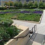 Lurie Garden Chicago, USA