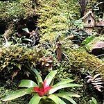 Bichacue Yath - Arte y Naturaleza Cali, Colombia