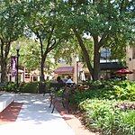 Hyde Park Village Tampa, USA