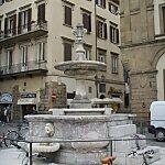 Fontana di piazza Santa Croce Florence, Italy