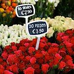 Bloemenmarkt Amsterdam, Netherlands