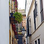 Barrio Santa cruz Seville, Spain