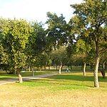 Parque del Alamillo Seville, Spain