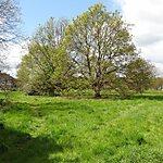 Leitrim Park London, United Kingdom