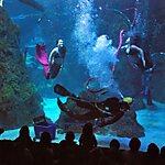 Downtown Aquarium Denver, USA
