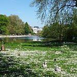 St. James's Park London, United Kingdom