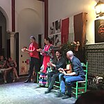 La Casa del Flamenco - Auditorio Alcántara Seville, Spain