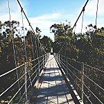 Spruce Street Suspension Bridge San Diego, USA