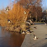 Green Lake Park Seattle, USA