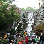 Waterfall Garden Seattle, USA