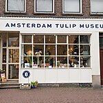 Amsterdam Tulip Museum Amsterdam, Netherlands